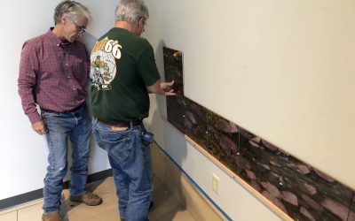 Public Art Mural Unveiling For Neosho Newton County Library